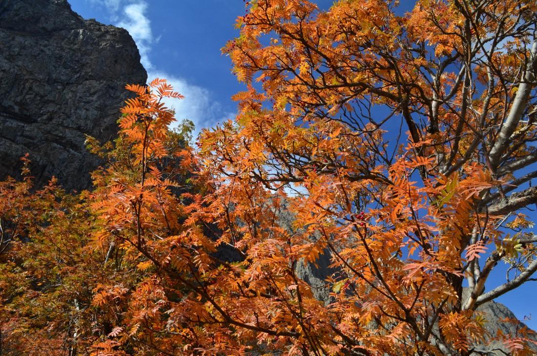 Ущелье Белагорка (осень). Фото, Отзывы.